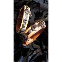 Hundehalsband im Western-Style mit Conch, naturfarbend (HH 5) Bild 1