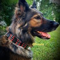 Hundehalsband - Vollrindleder - für große Hunde, im indianischem Stil 4cm breit, Türkis oder Koralle (HH 23) Bild 1