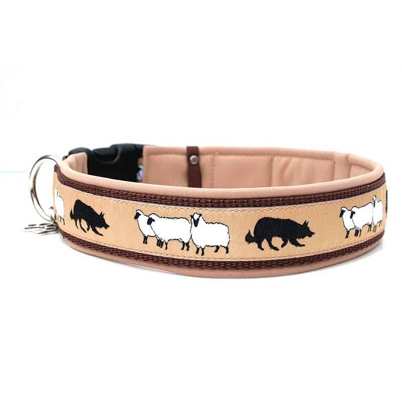 Hundehalsband »Hütehund BC« mit Softshell unterlegt aus der Halsbandmanufaktur von dogs & paw Bild 1