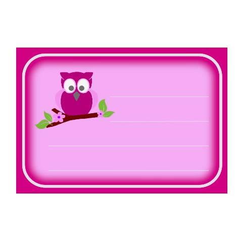 10 Aufkleber für die Schule Eule pink Bild 1