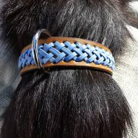 Hundehalsband mit Flechtung (HH 16) Bild 4
