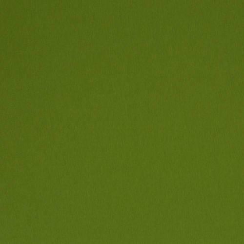 Jersey uni Baumwolljersey Vanessa von Swafing grün