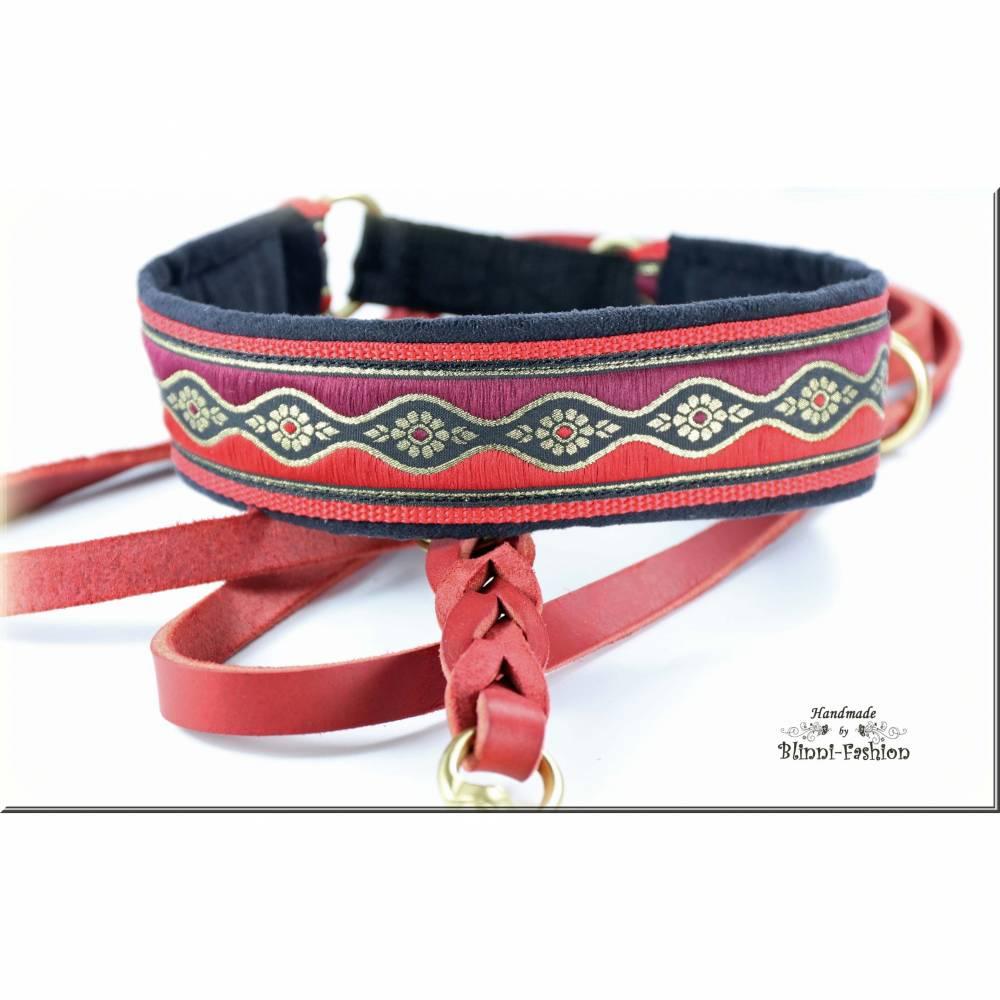 Halsband WAVE mit Zugstopp,Hund, in 6 verschiedenen Farben und 2 Breiten, Hundehalsband, Martingale Bild 1