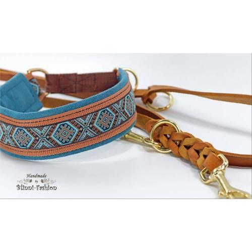 Halsband MEDIVAL mit Zugstopp für deinen Hund, Rhodesian Ridgeback, Hundehalsband, Martingale