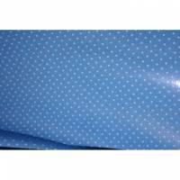 14,50 Euro/m Laminierte Baumwolle Punkte hellblau Bild 1
