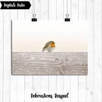 Printable: Rotkehlchen Winter Fotoarbeit Bild 1