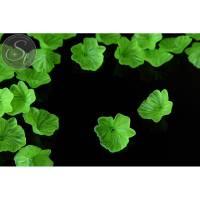 5 Stk. grüne Acryl-Blüten frosted 33mm Bild 1