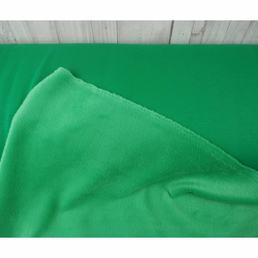 Alpenfleece Wintersweat grün, Sweat grasgrün, kuscheliger Sweat, Stoff Meterware, Fleece Bild 1