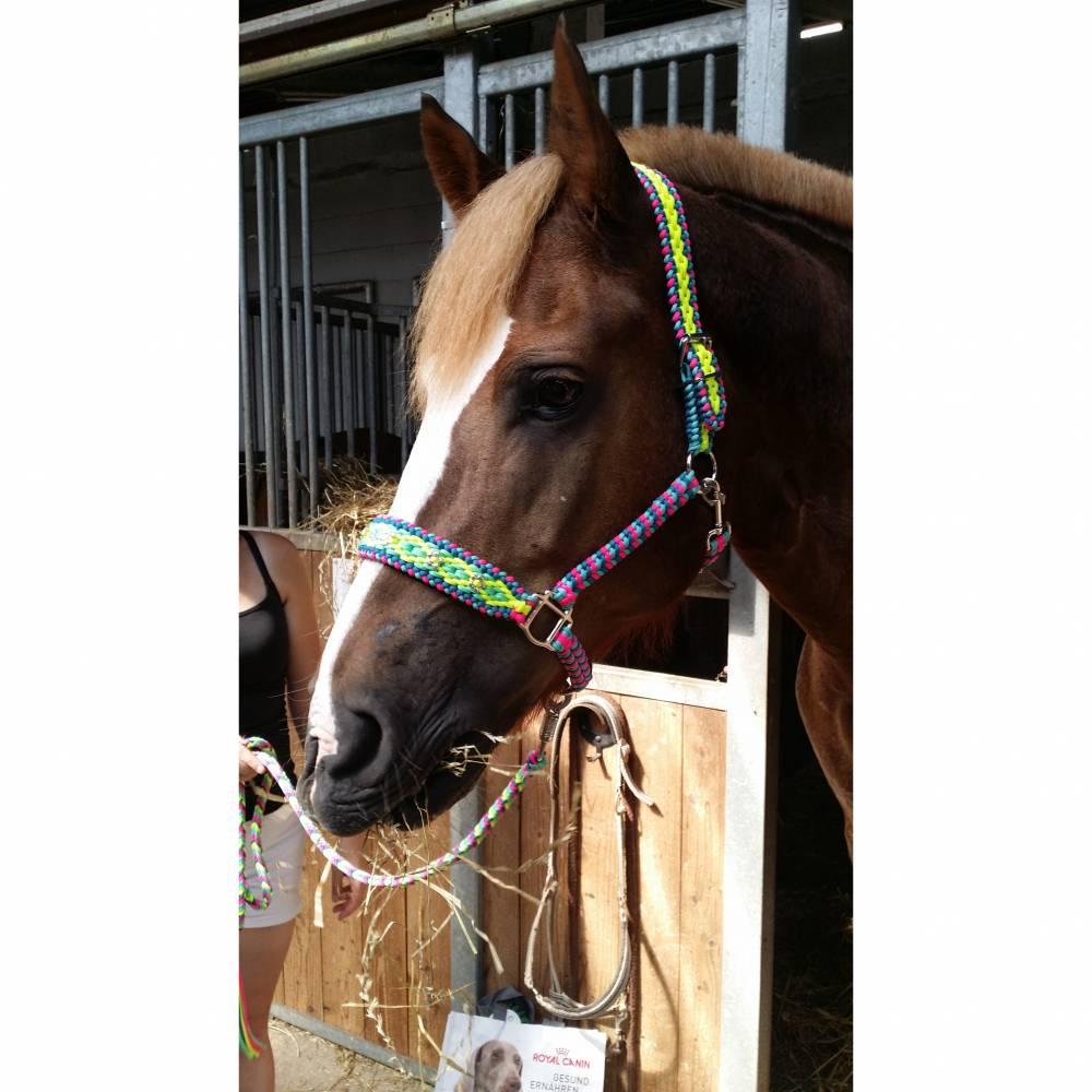 Tolles Pferde Halfter Größe Warmblut aus dem Hause Knotenwerke Paracord Bild 1