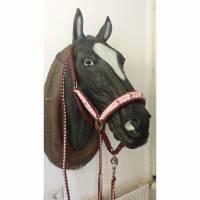 Tolles Pferde Halfter-Set mit Strick Größe Warmblut aus dem Hause Knotenwerke Paracord Bild 1