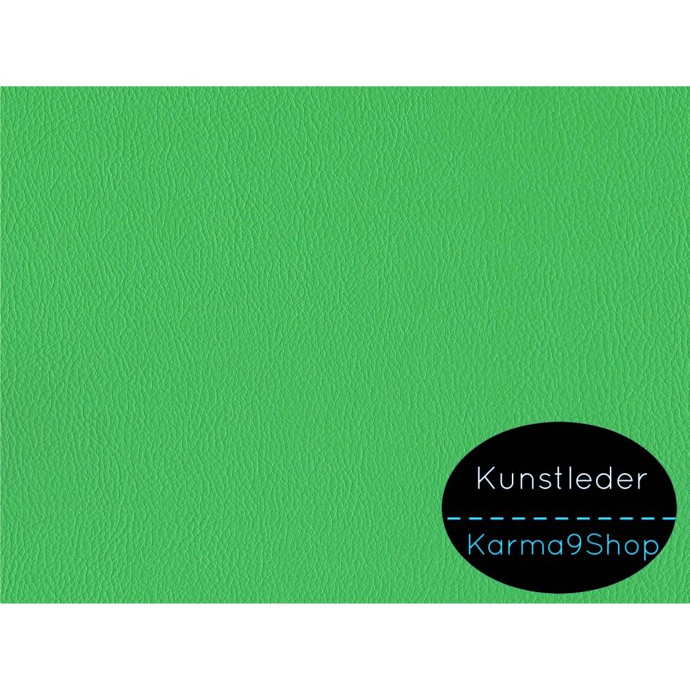Kunstleder basic lindgrün 50cm x 140cm Bild 1