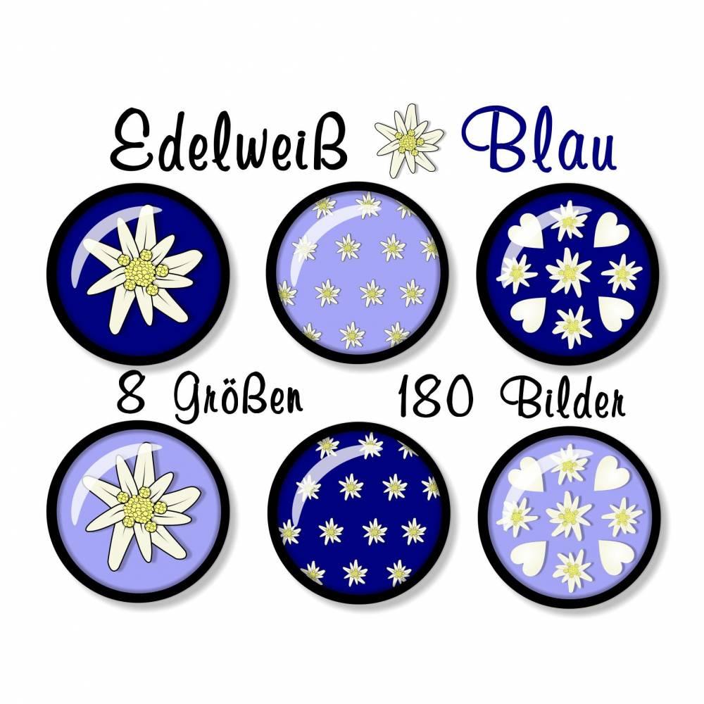 180 Cabochon-Bilder digital, Set mit 8 Größen, Edelweiß Hellblau Blau, z.B. für Cabochon-Schmuck Bild 1