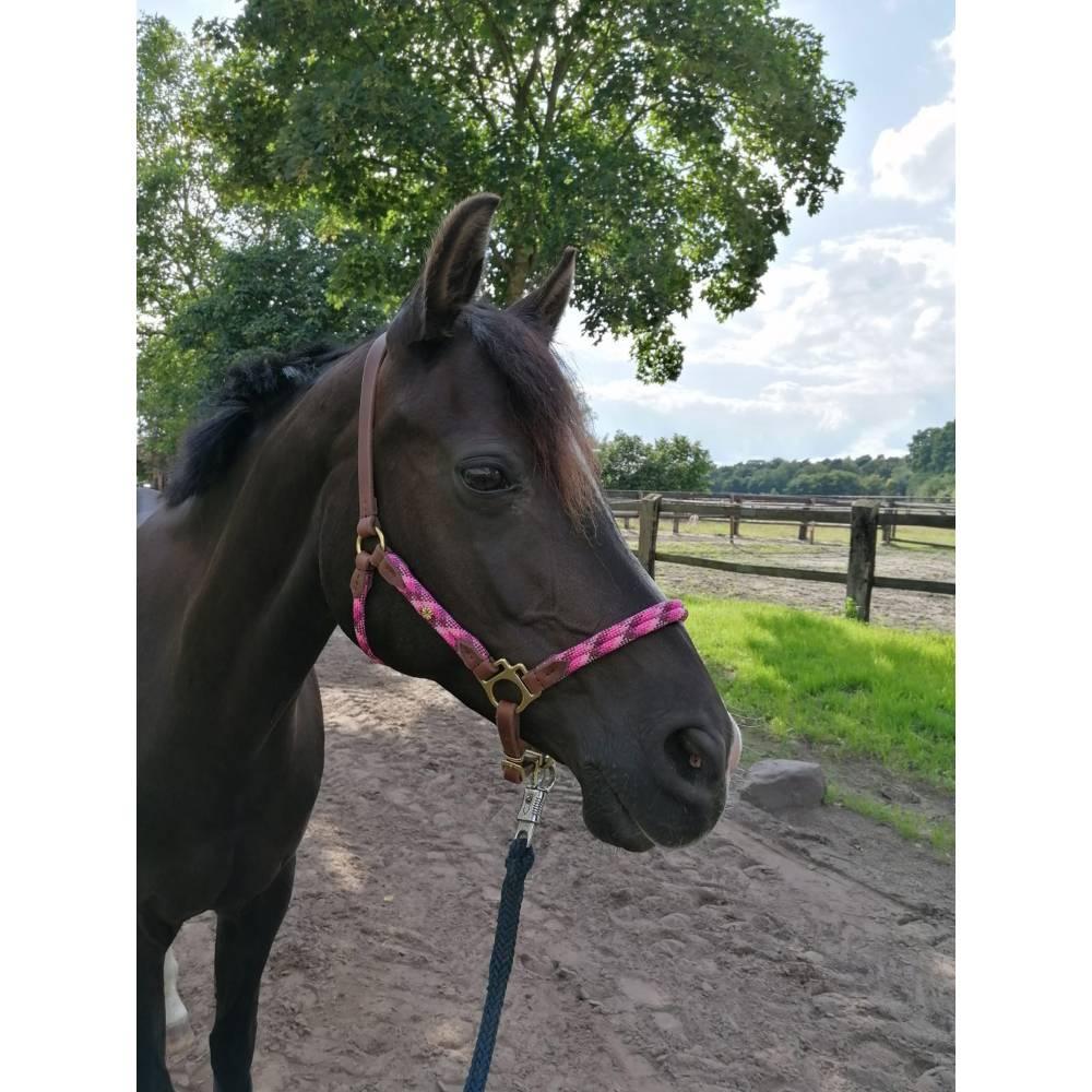 Pferdehalfter Tauhalfter mit Leder, komplett handgenäht, für Mini Shetty, Shetty, Pony, Cob, Warmblut, Kaltblut Bild 1