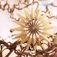 """Papierstern """"Sternschnuppe"""" - Fensterstern - gold - Ø 10cm Bild 1"""