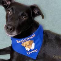 über 250 Stickmotive Hundehalstuch royalblau blau mit Namen und Motiv personalisiert / bestickt  - viele Schriftarten Bild 1