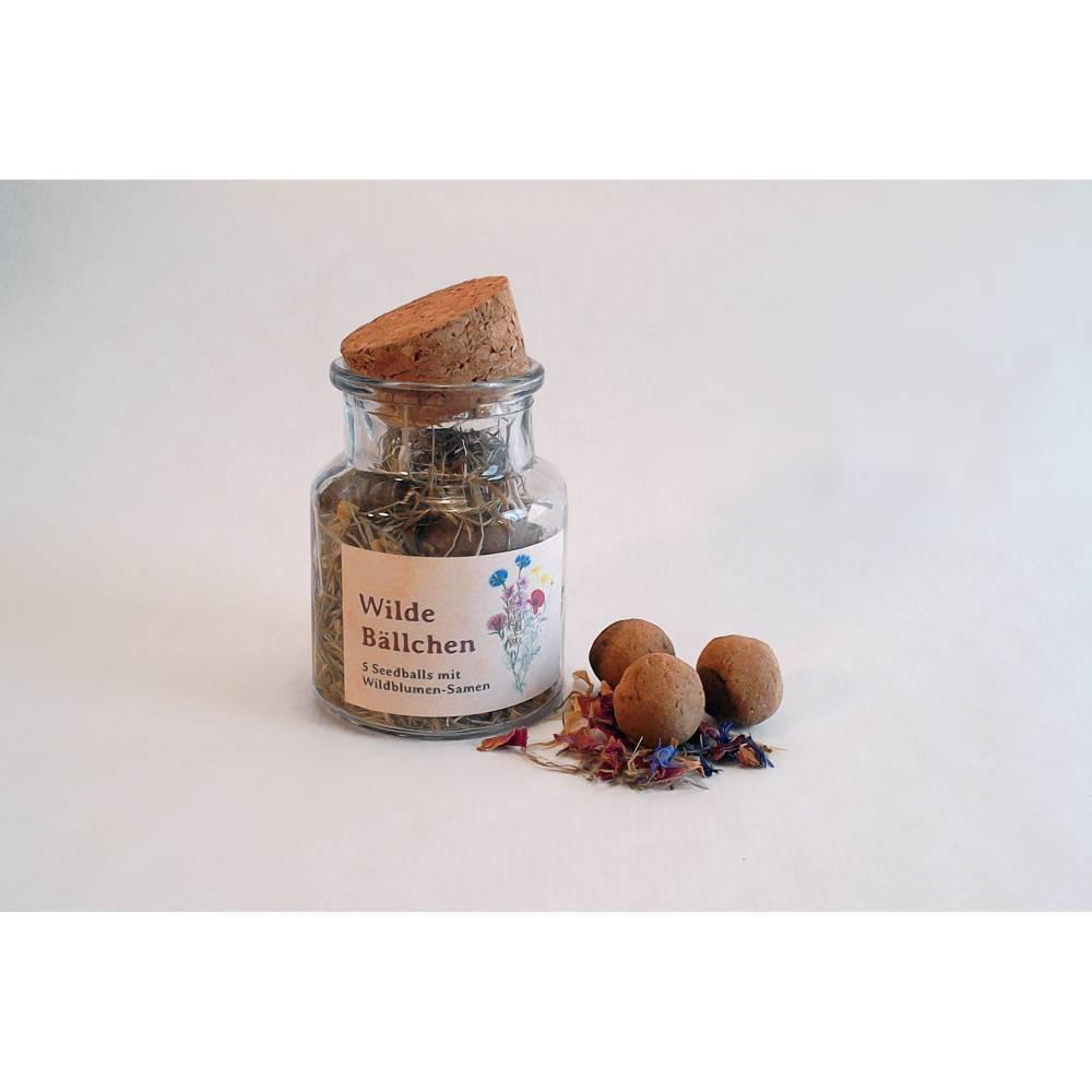 Handgerollte Seedballs »Wilde Bällchen« Bild 1