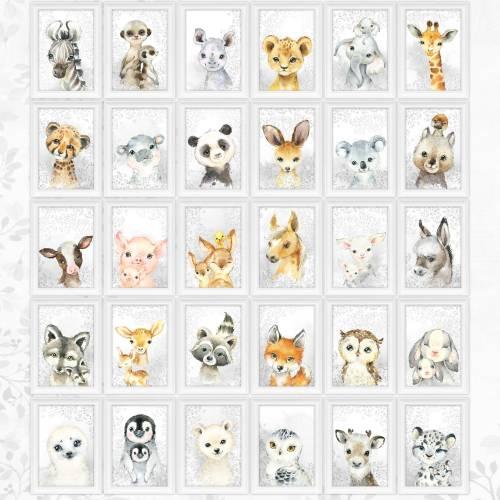 27 TIER MOTIVE Spar Sets & Einzelbilder Kinderzimmer Bilder Babyposter Tierposter A4  |SET 44/Single