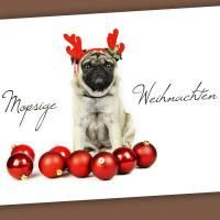 """Postkarte """"Mopsige Weihnachten"""" Bild 1"""
