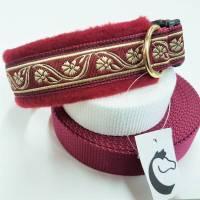 "Hundehalsband ""Goldblume"" ~ Größe 40-45 cm * verstellbar. Halsbandmanufaktur Cavalletti-4Dogs Bild 1"