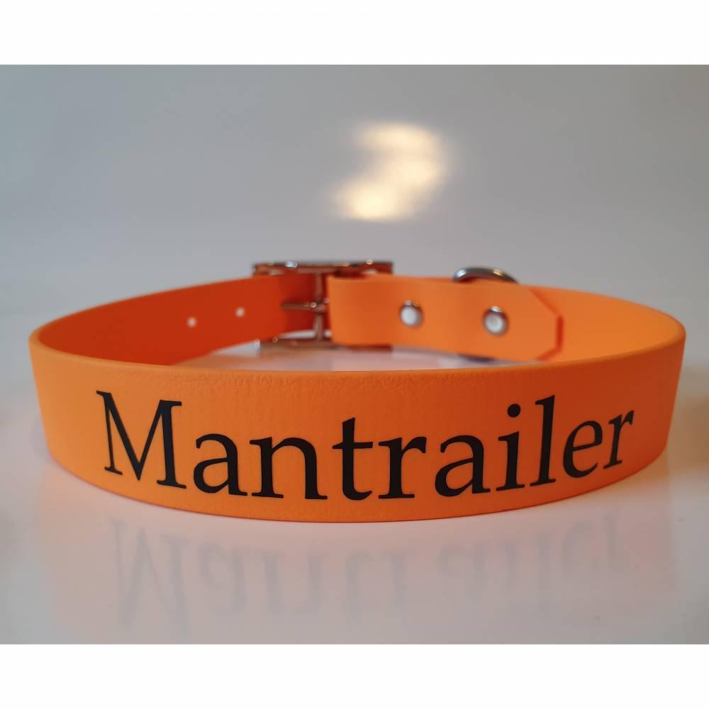 """Biothane Halsband """"Mantrailer"""" Bild 1"""