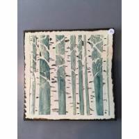 Keramikfliese, Wandfliese, Fliese, Birga Bild 1