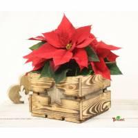 Vintage Blumenkiste Weihnachtsstern Weihnachtsgeschenk Rustikale Holzkiste mit Stern Obstkiste für Blumen Geschenkkorb Blumentopf aus Holz Bild 1