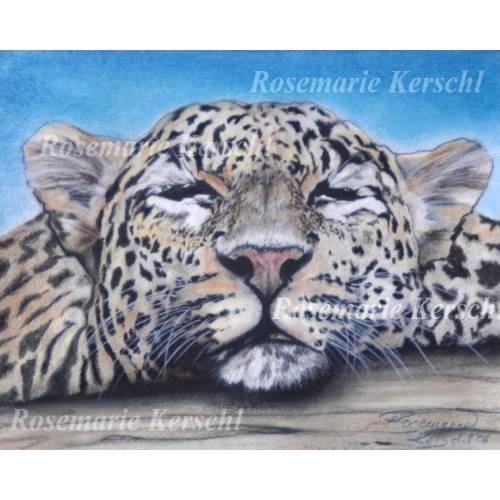 Schlafenden Leopard Pastellkreidebild handgemaltes Tierporträt 30 x 40 cm in Querformat