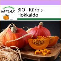 SAFLAX - BIO - Kürbis - Hokkaido - 5 Samen - Cucurbita maxima Bild 1