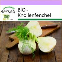 SAFLAX - BIO - Knollenfenchel - 100 Samen - Foeniculum vulgare Bild 1