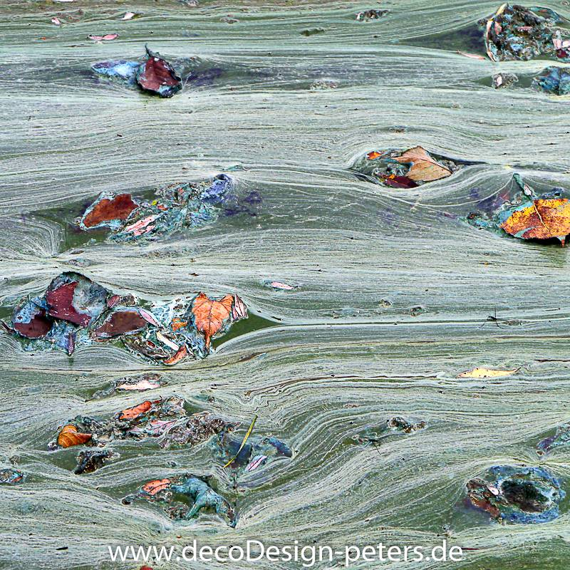 Uferzone Fotografie Kunstdruck Aluminiumdibond Bild 1