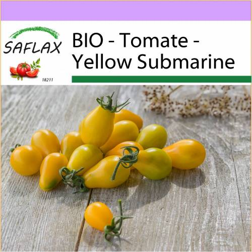 SAFLAX - BIO - Tomate - Yellow Submarine - 10 Samen - Solanum lycopersicum