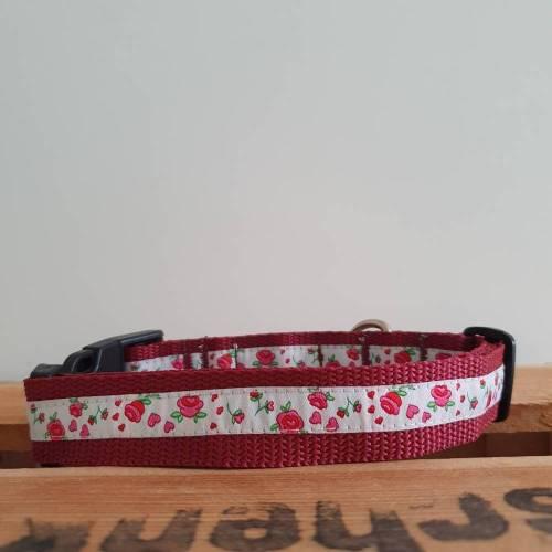 Halsband  34-48 cm