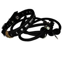 Leine Halsband Set schwarz silber sehr edel mit Kristallstein, für mittelgroße Hunde, verstellbar Bild 1
