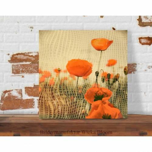 MOHNBLUMEN IM NETZ Blumenbild auf Holz Leinwand Kunstdruck*Wanddeko Landhausstil Retro Shabby Chic Vintage