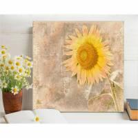 SONNENBLUME RETRO Blumenbild auf Holz Leinwand Kunstdruck*Wanddeko Landhausstil Romantisch Shabby Chic Vintage  Bild 1