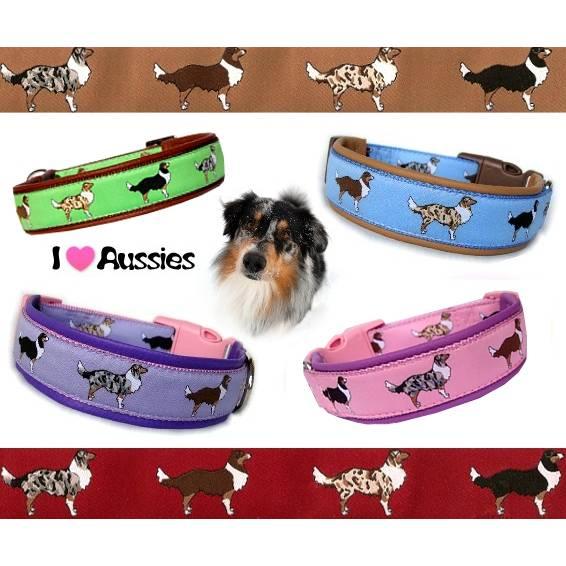 Australian Shepherd Halsband, Leder gepolstert, in vielen Farben, Maßanfertigung, Aussie, Hund Bild 1