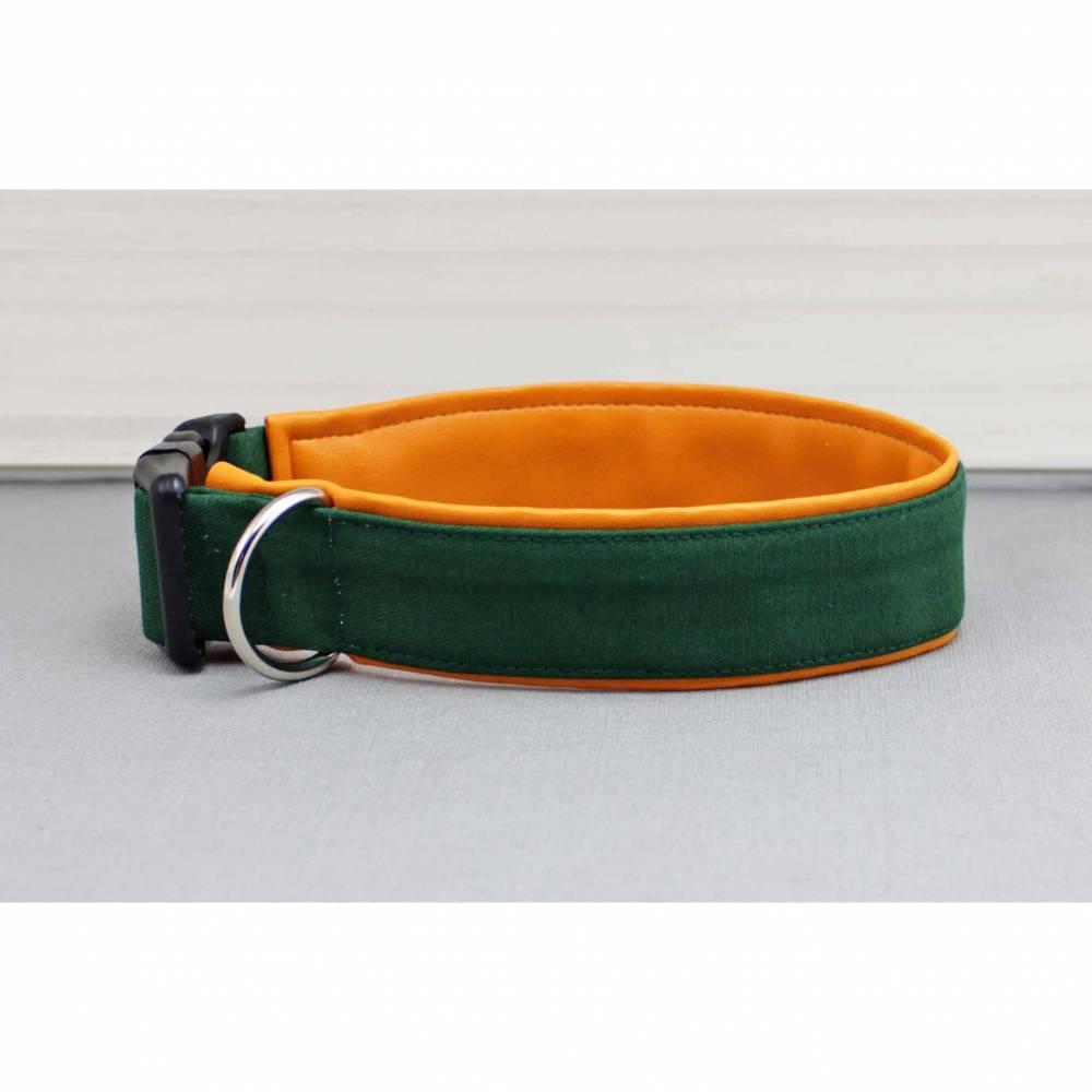 Hundehalsband in dunkelgrün, uni, mit Kunstleder in orange, bunt, olivgrün, grün, stylisch, modern, Hund, Halsband Bild 1