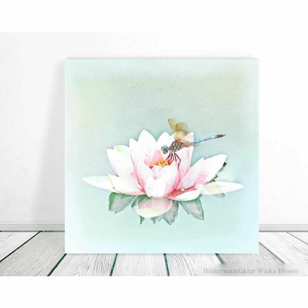 LIBELLE AUF SEEROSE Blumenbild auf Holz Leinwand Kunstdruck*Wanddeko Landhausstil Romantisch Shabby Chic Vintage  Bild 1