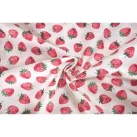 Andover Fabrics Strawberry Jam Strawberry white 2/9365B 0,5m  Bild 1