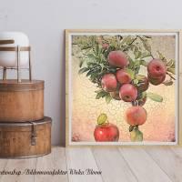 ÄPFEL & AMEISE Früchte Äpfel Bild auf Holz Leinwand Print Wanddeko Landhausstil Romantisch Shabby Chic Vintage