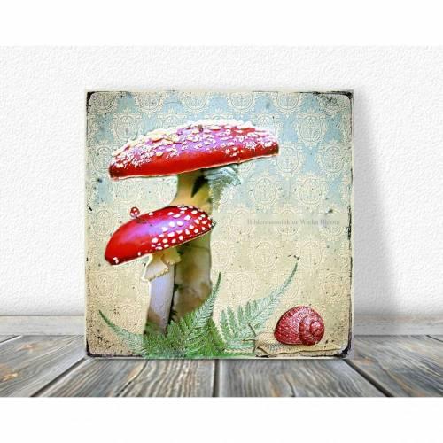 FLIEGENPILZ & SCHNECKE verspieltes Vintagebild auf Holz Leinwand Print Wanddeko Landhausstil Shabby Chic handmade kaufen