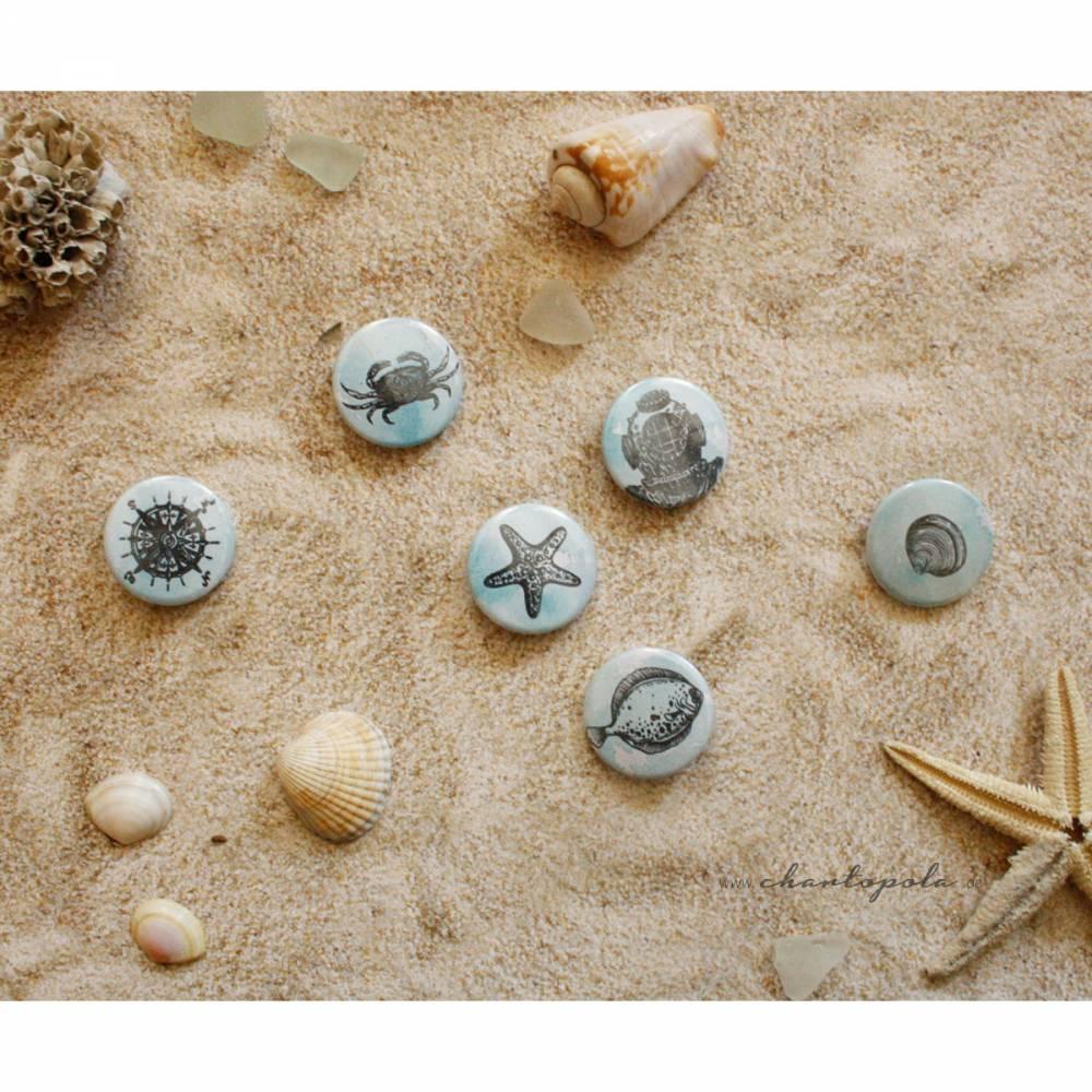 """maritime Ansteck-Buttons """"Strandgut"""" 25 mm Bild 1"""