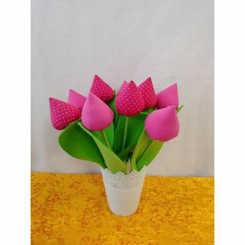 Tulpen Pink oder Pink mit Weißen Punkten