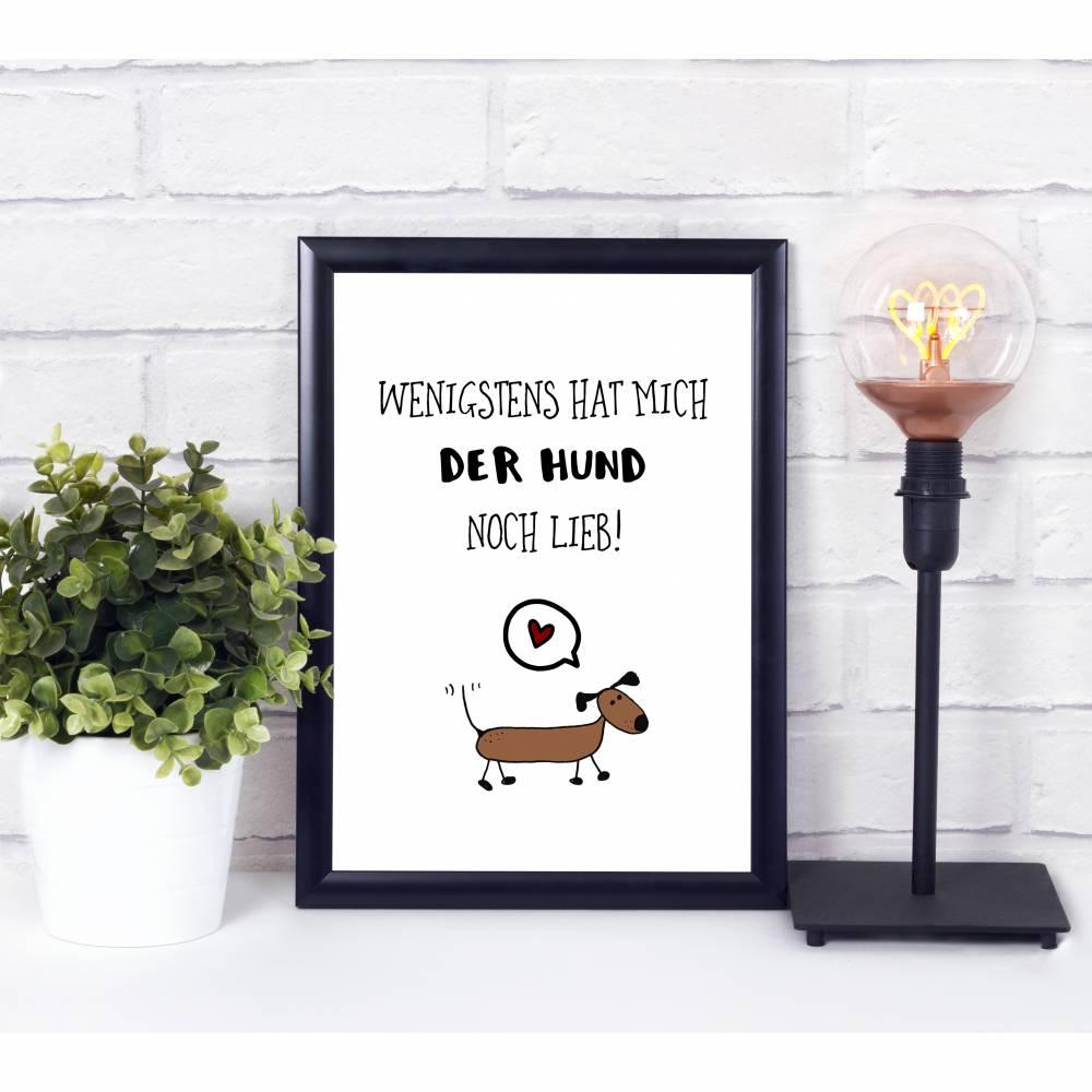 Hunde Poster, Dackel Zeichnung Bild 1