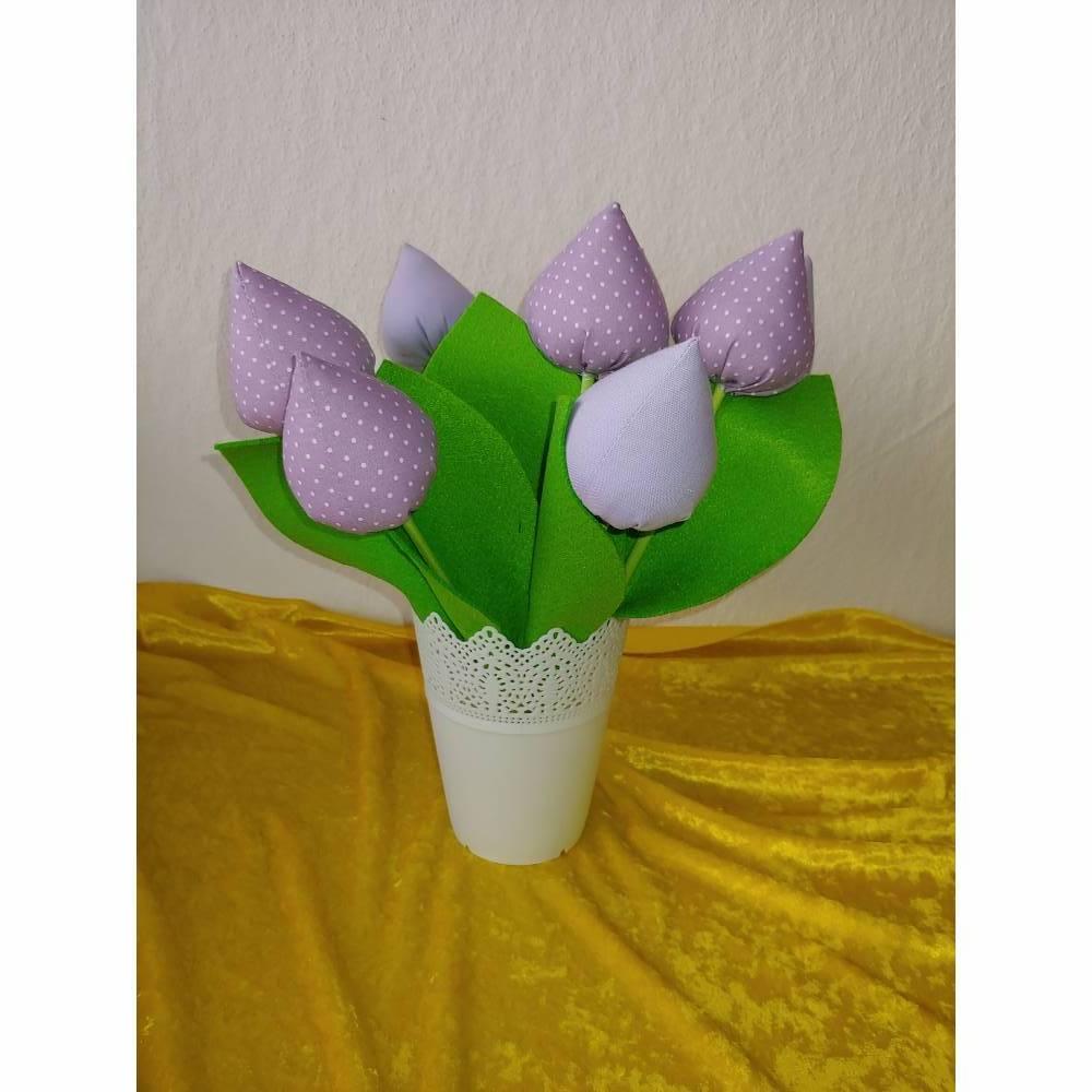 Tulpen Flieder oder Flieder mit Weißen Punkten Bild 1