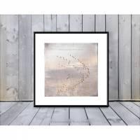 KRANICHE BEI SONNENUNTERGANG Tierbild auf Holz Leinwand Print Landhausstil Romantisch Shabby Chic  Bild 1