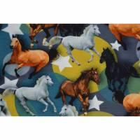 Jersey mit Pferden und Sterne 50 x 155 cm Nähen Stoff Pferdeherde Bild 1