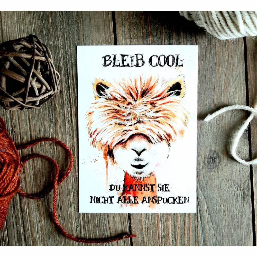 Alpaka Postkarte, Bleib cool,Kawaii, Dromedar,  Grußkarte , witzig Bild 1
