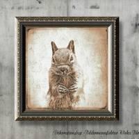 EICHHÖRNCHEN Waldtiere Vintage Bild auf Holz Leinwand Print Wanddeko Landhausstil Shabby Chic handmade kaufen Bild 1