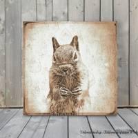 EICHHÖRNCHEN Waldtiere Vintage Bild auf Holz Leinwand Print Wanddeko Landhausstil Shabby Chic handmade kaufen Bild 3